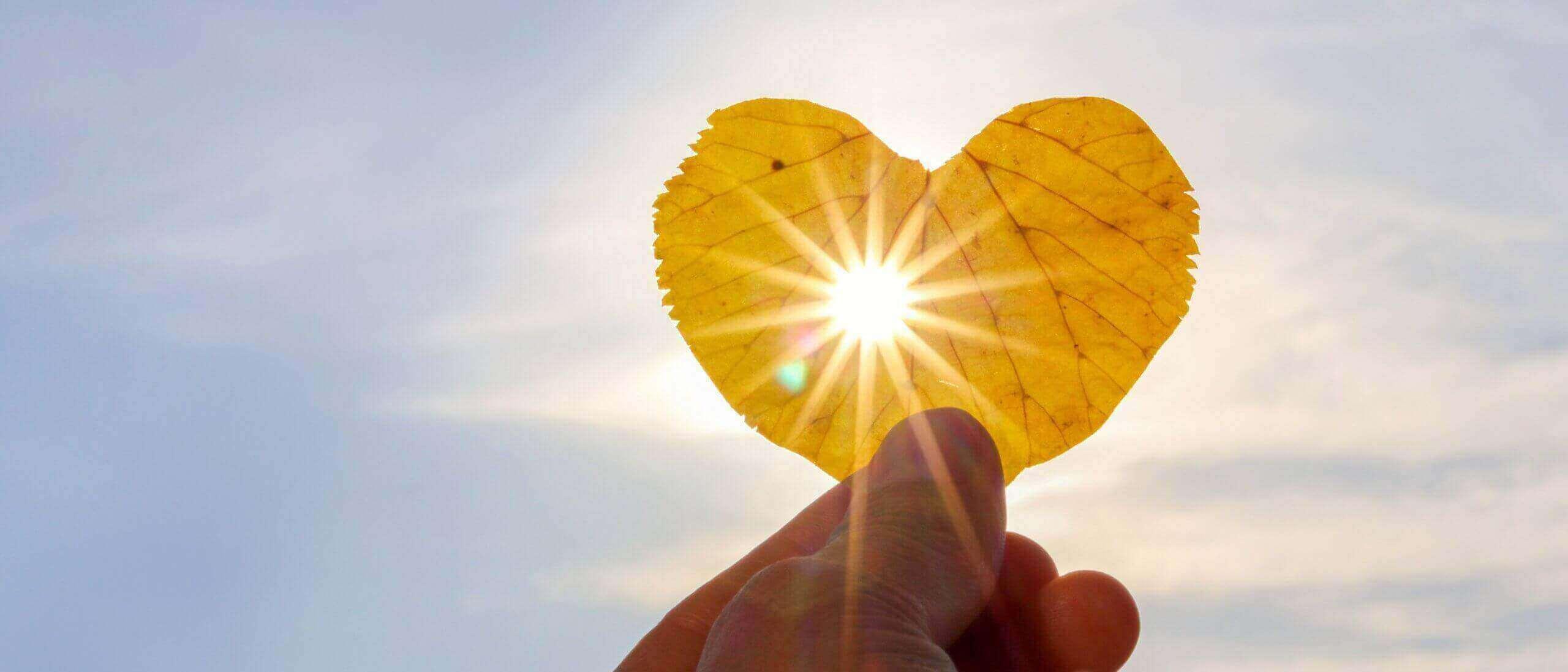 Hand mit Laubblatt in Herzform